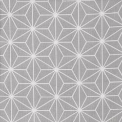 Tissu coton enduit 154 - CASUAL gris